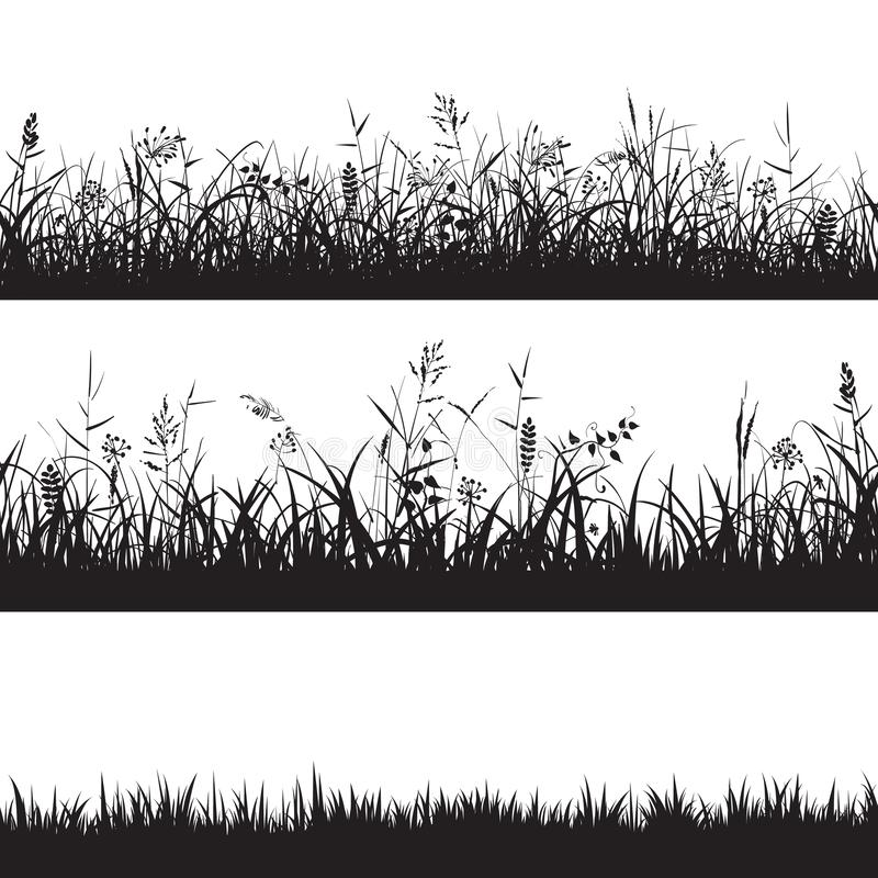 Set of grass seamless borders. Black silhouette of grass, spikes and herbs. Vector. Set of grass seamless borders. Black silhouette of grass, spikes and herbs vector illustration