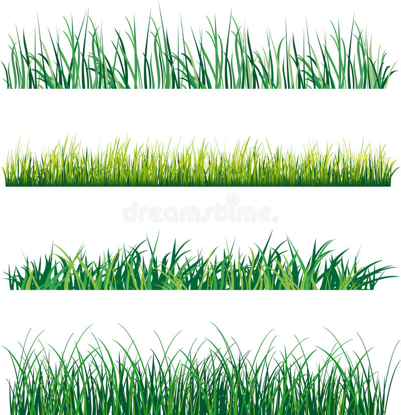 Grass. Set of grass on white background. Vector illustration