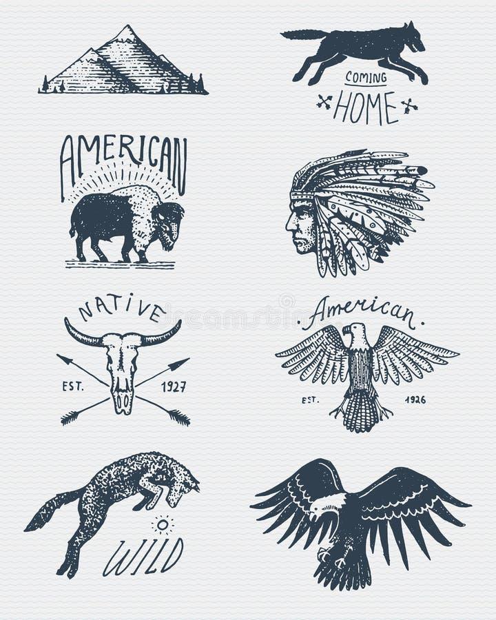 Set grawerujący rocznik, ręka, etykietki lub odznaki dla obozować, rysująca, stara, wycieczkujący, tropiący z łysym orłem bizon,  ilustracja wektor