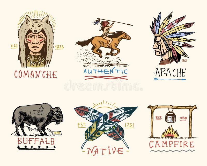 Set grawerujący rocznik, ręka, etykietki lub odznaki dla, rysująca, stara, hindusa lub rodowitego amerykanina bizon, twarz z piór royalty ilustracja