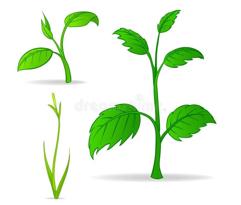 Set of green cartoon plants royalty free illustration