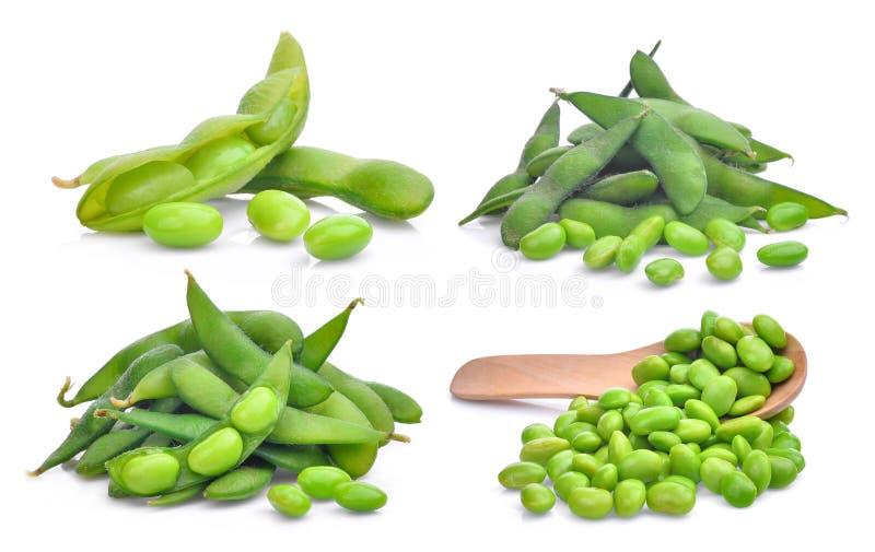 Set of green edamame beans isolated on white. Background stock images