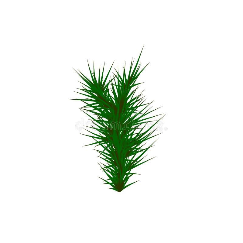 Set of Green grass. Green Grass White Background. Vector illustration vector illustration