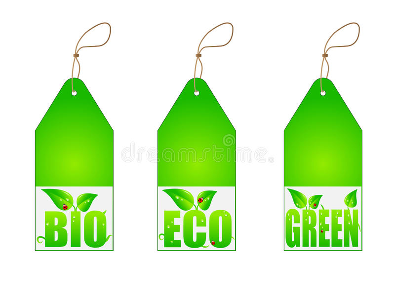 Set of green labels. Isolated on white vector illustration