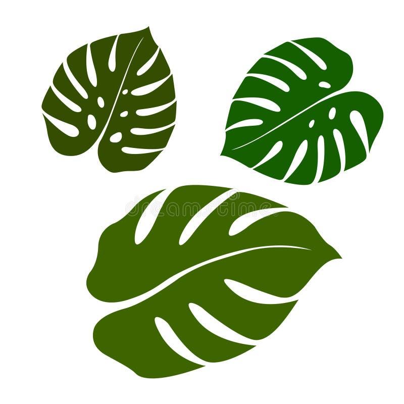 Set of green leaf in flat style. Green fresh plants isolated on. White background. Vector illustrator design vector illustration