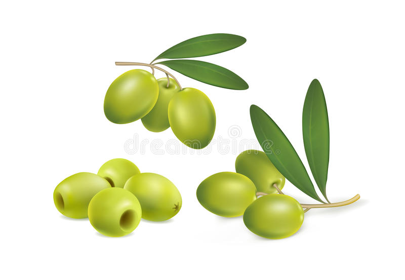 Set of green olives on white background royalty free stock images