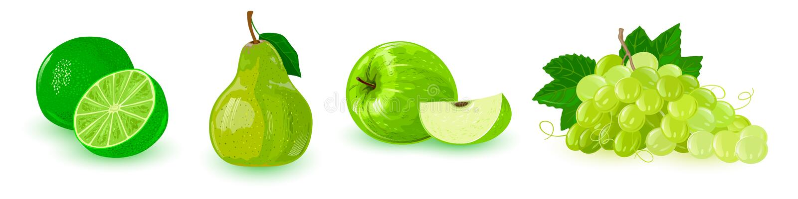 Set with green ripe fruits in line: apple, bunch of grapes, pear, lime. royalty free illustration