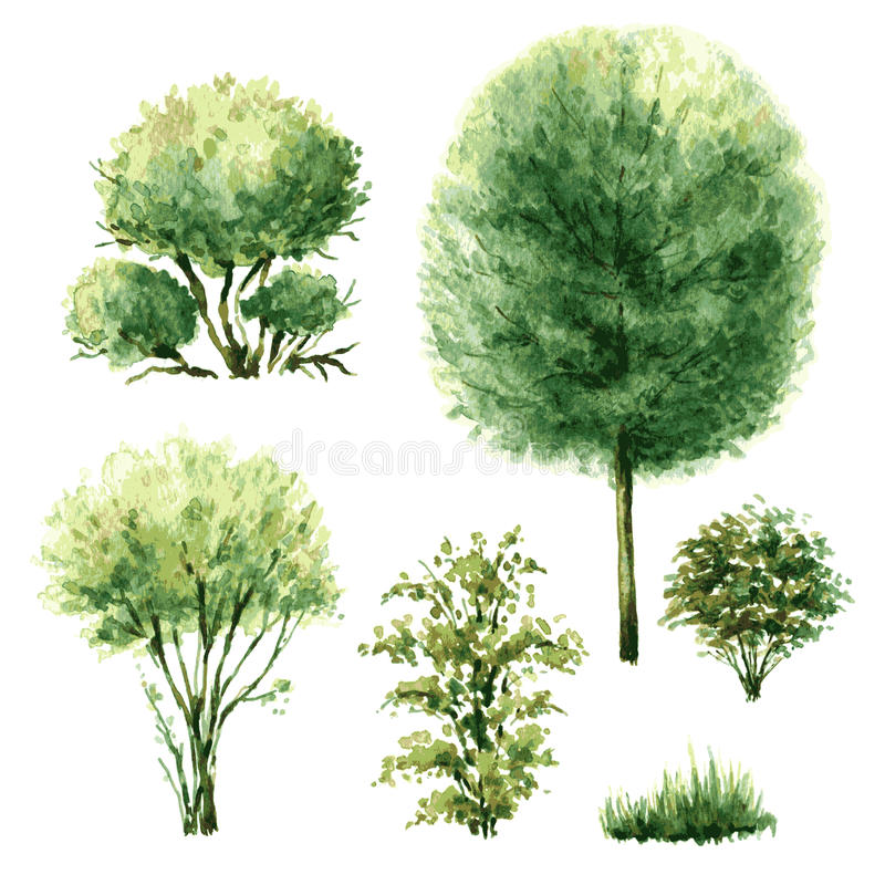 Set of green trees and bushes. stock illustration