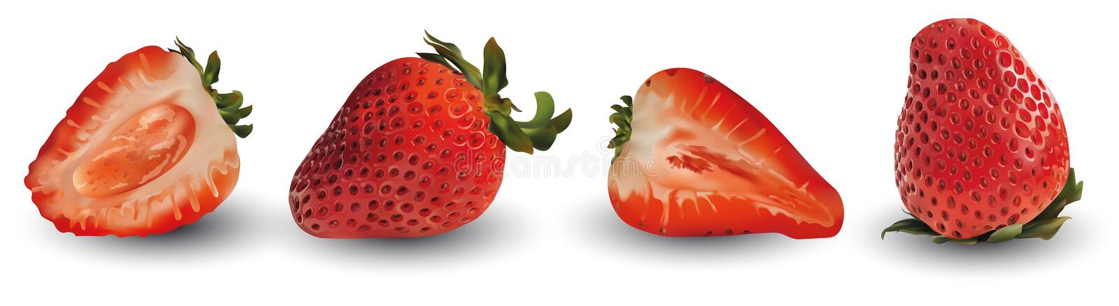 Set, group, collection strawberry realistic 3d vector. Set raw strawberry fruit. Slice strawberry isolated. Concept of. Good nutrition, healthy food and stock illustration
