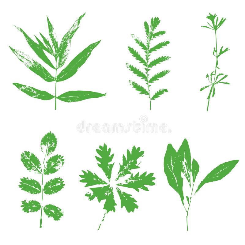 Set of grunge hand drawn leaves royalty free illustration