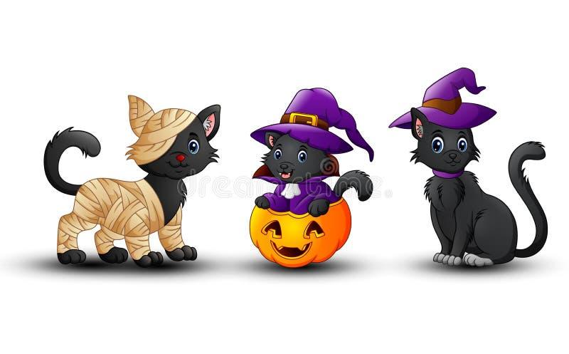 Set of Halloween black cat with pumpkin stock illustration