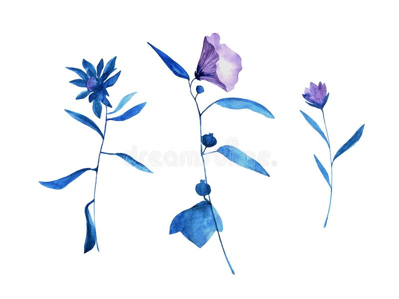 Set of hand drawn blue bell flowers with leaves Sketch botanical illustration, campanula painting by watercolor, isolated on ilustração do vetor