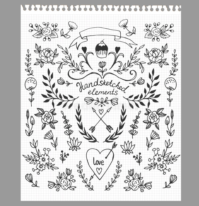 Set of hand-drawn floral elements vector illustration