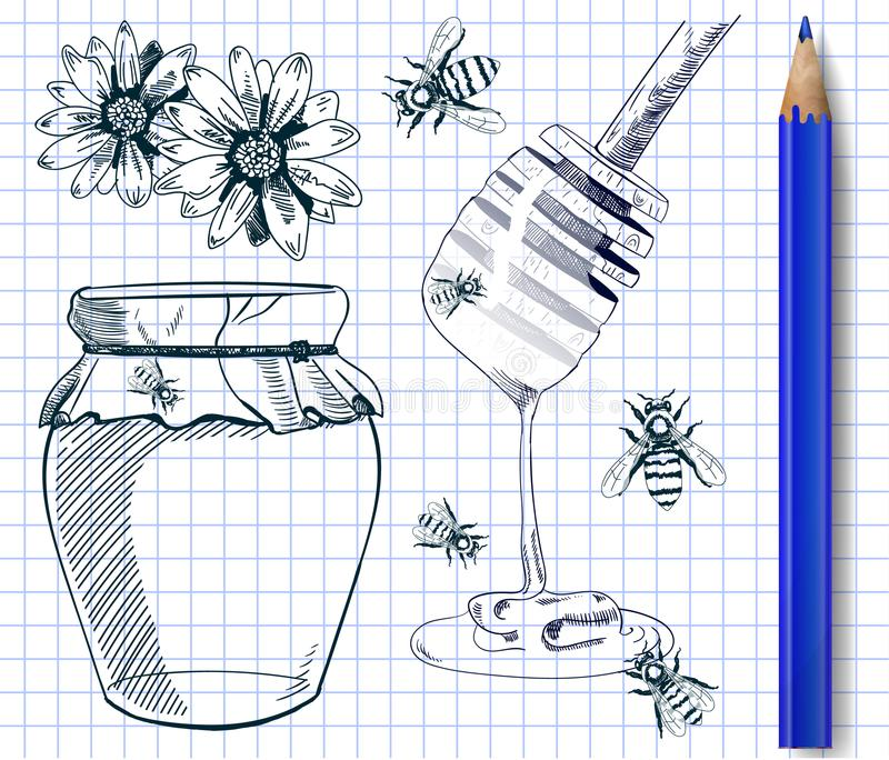 Set of hand drawn illustrations. HONEY. VECTOR illustration. Blue outline drawings on notebook page with blue pencil. royalty free illustration