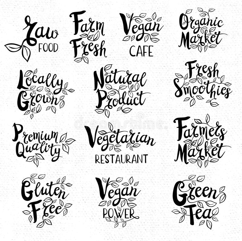 Set of hand drawn labels food, spices. Set organic logo, lettering design, calligraphy logotype, leaf, set of stickers, green labels Eco, bio, locally grown vector illustration