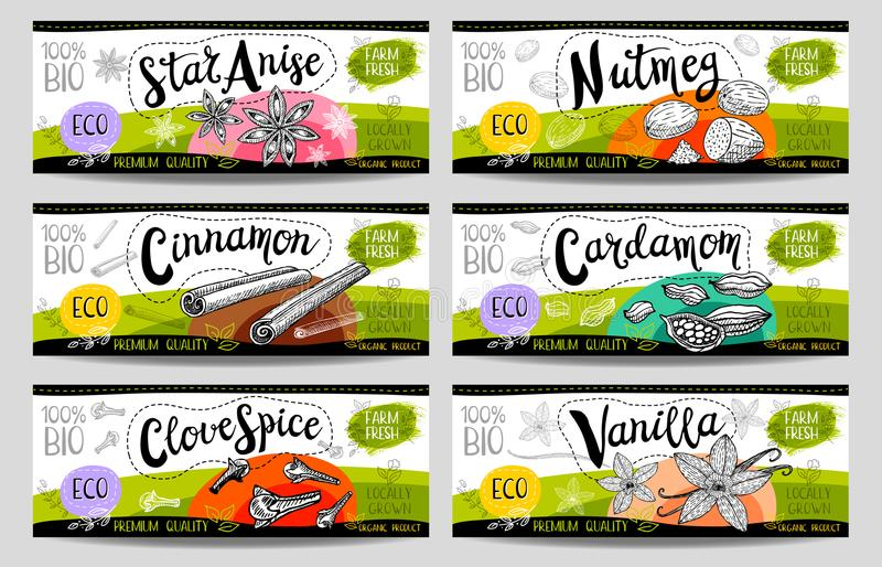 Set of hand drawn labels food, spices. vector illustration