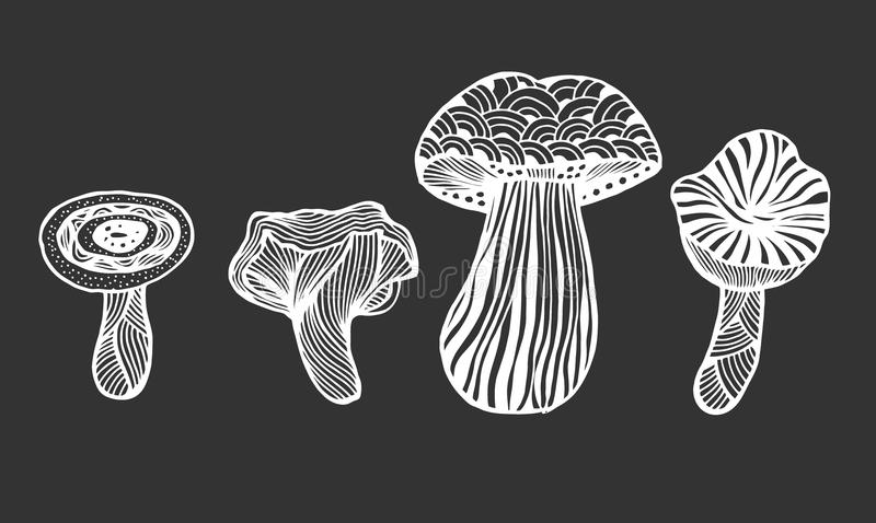 Hand drawn magic mushroom. Set of Hand drawn magic mushroom for adult anti stress Coloring Page with high details isolated on white background, illustration in stock illustration
