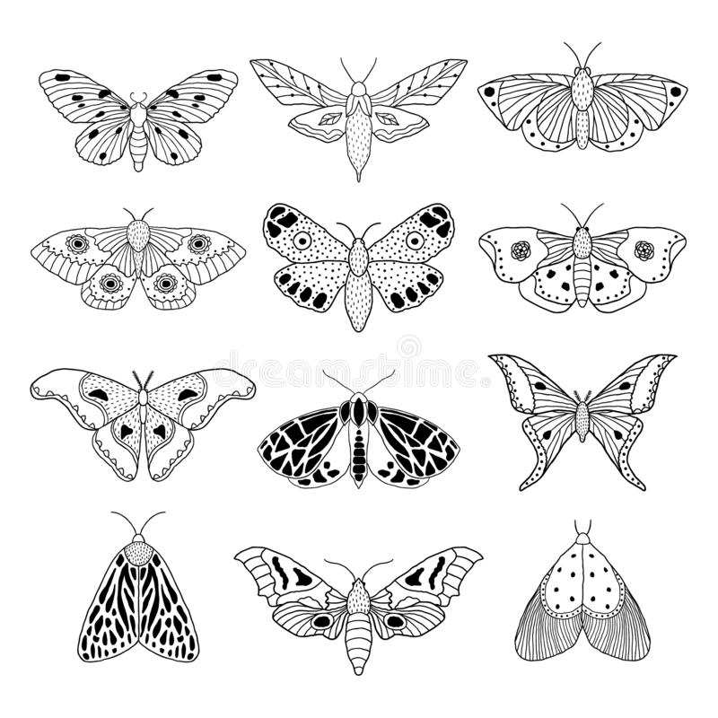 Set of hand drawn moths royalty free illustration