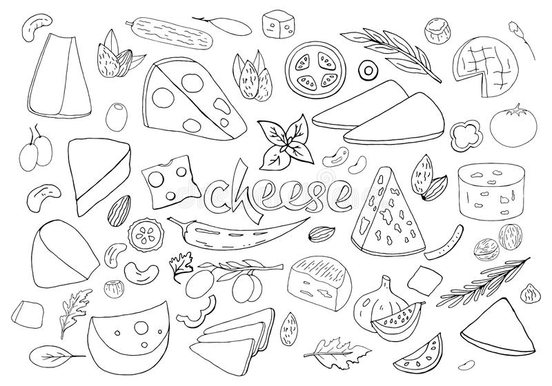 Set of hand-drawn outline cheese elements isolated on white background. Vector outline cheese collection vector illustration
