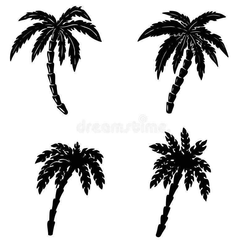 Set of hand drawn palm illustrations on white background. Design elements for poster, emblem, sign, badge. vector illustration