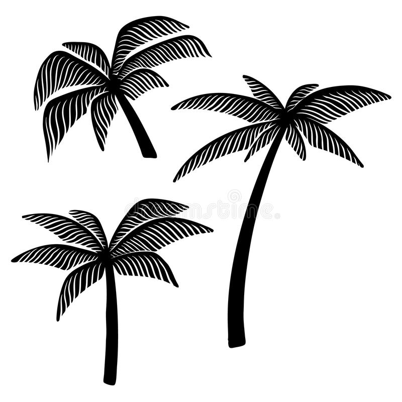 Set of hand drawn palm tree illustrations. Design element for poster, card, banner, t shirt. royalty free illustration