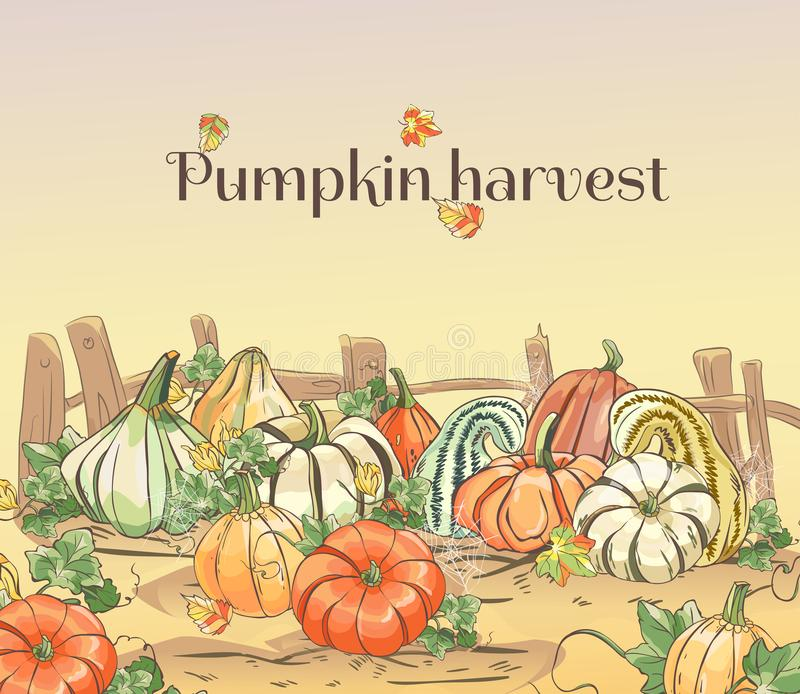 Set of hand drawn pumpkins. Autumn scene with different pumpkins and an old wooden fence royalty free illustration