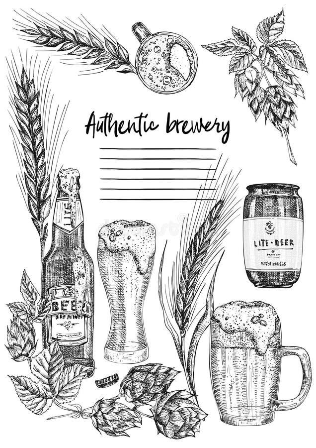Set hand drawn sketch bottle and glasses beer, hop, wheat Vintage design bar, restaurant, cafe menu on white background. Graphic vector art Creative template royalty free illustration