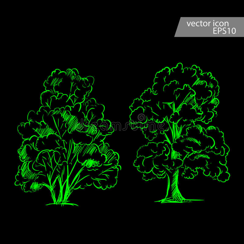 Set of hand drawn tree sketches. Artistic drawing. vector illustration