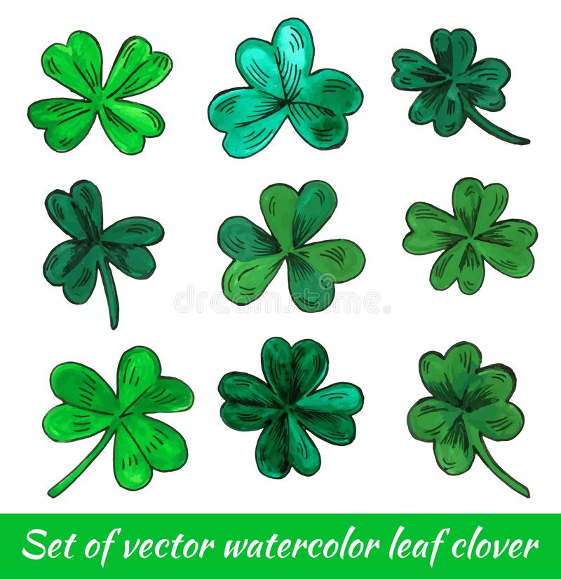 Set of hand drawn watercolor leaf clover isolated on a white background. Vector illustration royalty free illustration
