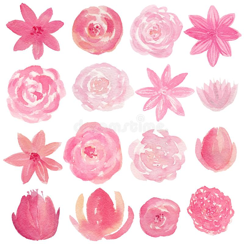 Set of hand painted watercolor flowers in pink color. Isolated clipart for wedding, invitations, blogs, template card royalty free illustration