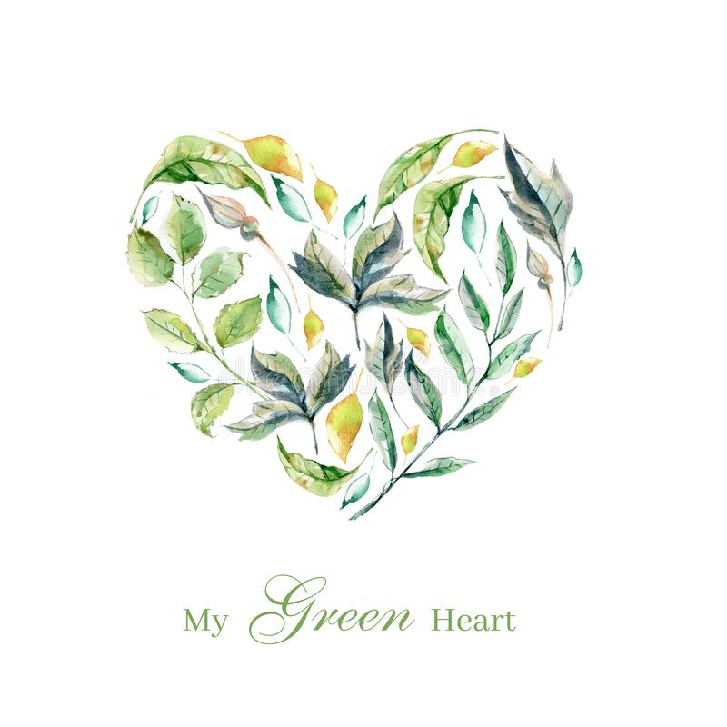 Set of hand painted watercolor plants, green leaves and herbs, p stock illustration