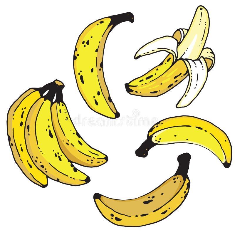 Set handdrawn banany ilustracji