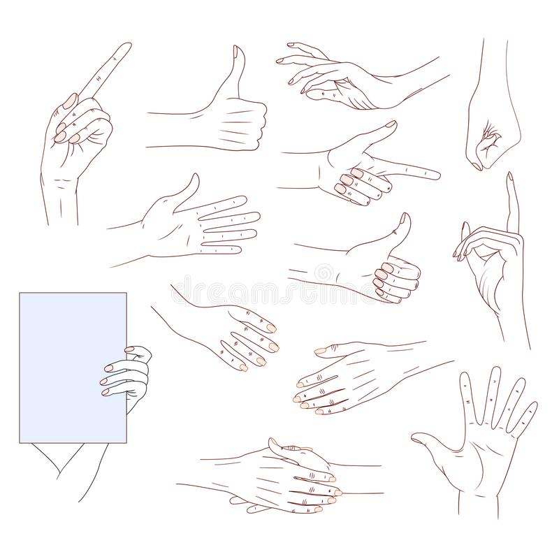 Set hands in different gestures isolated on white background. good skin vector line illustration. Collection emotions royalty free illustration