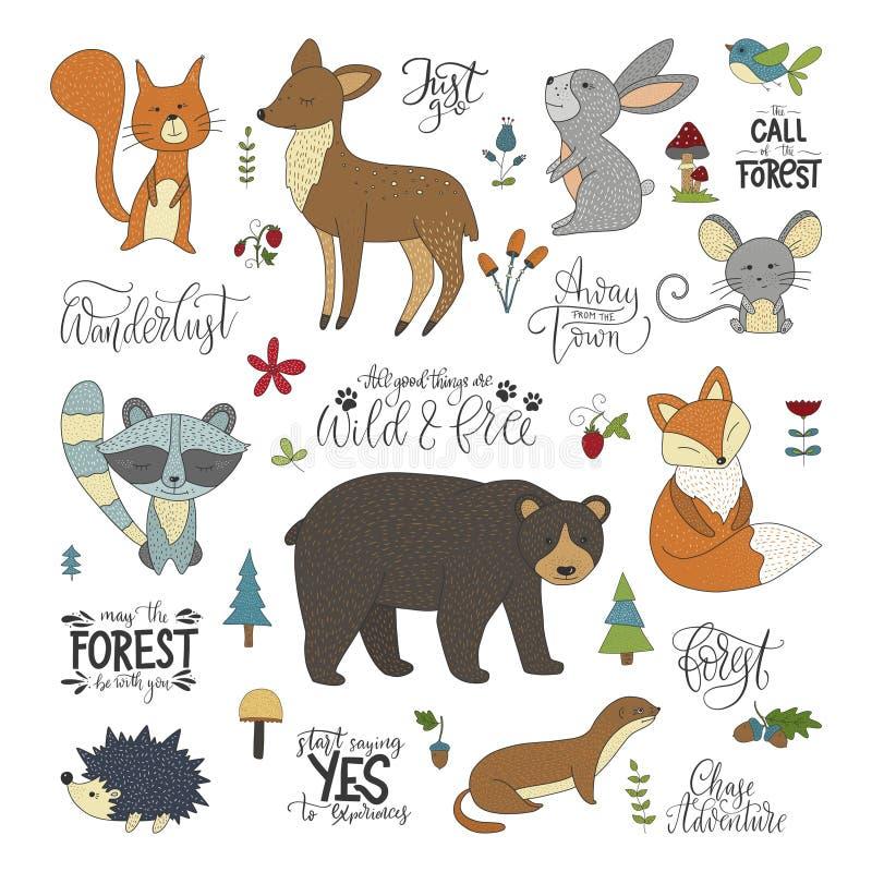 Set hannddrawn literowania i zwierząt śliczne lasowe wycena ilustracja wektor