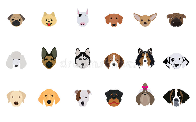 Set of Head Dogs Vectors and Icons. Set of many head dogs vectors and icons stock illustration
