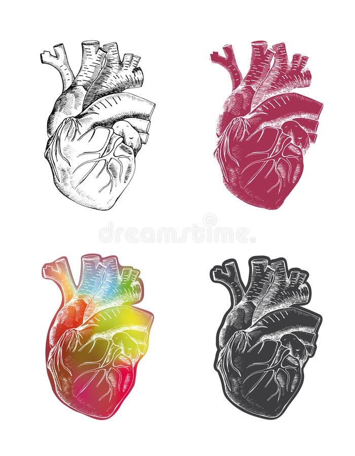 Set of heart royalty free illustration