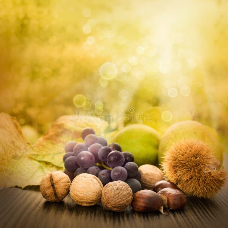 Set Herbstfrucht lizenzfreies stockfoto