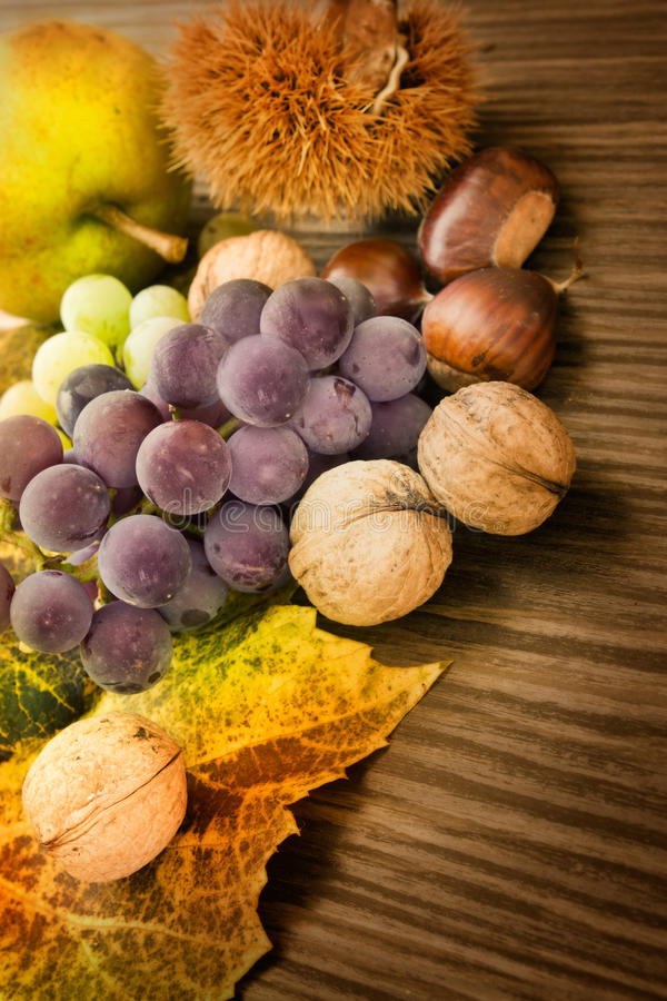 Set Herbstfrucht stockfotografie