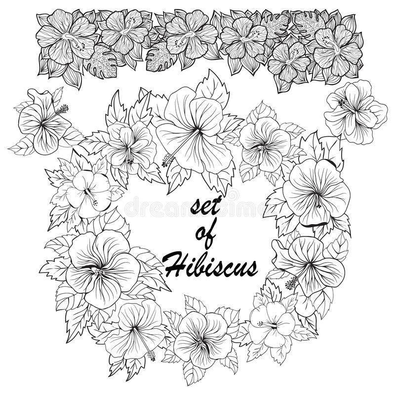 Set of hibiscus Exotic tropic botany leaves and flowers sketch royalty free illustration