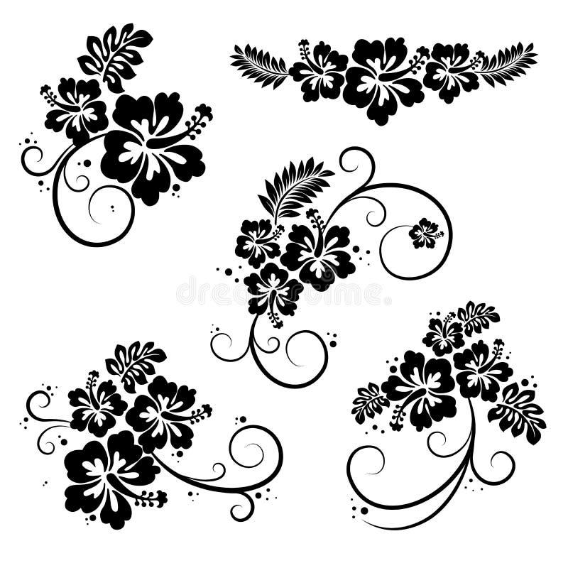 Set of hibiscus flourish decorative design elements royalty free illustration