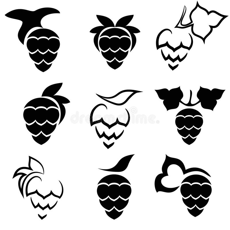 Download Set Of Hop Plant With Leafs Stock Vector - Image: 34268512