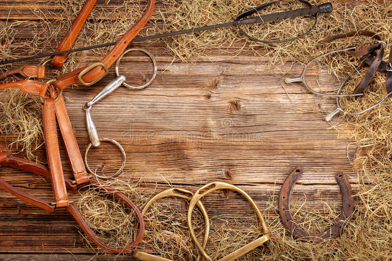 Set of horse equipment on wooden background. With empty space for text royalty free stock photos