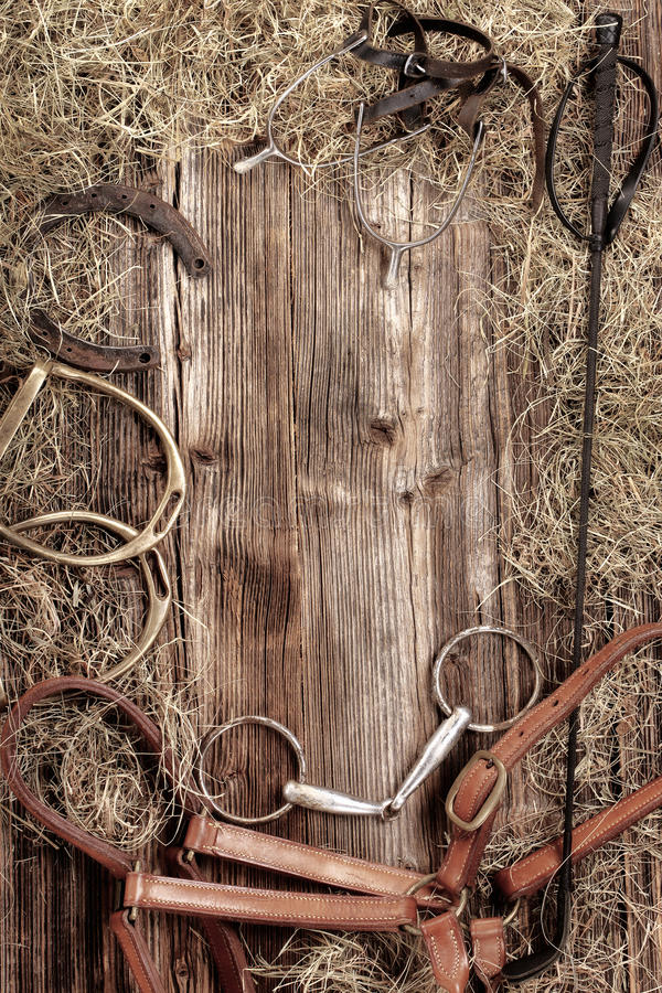 Set of horse vintage equipment on wooden background. With empty space for text royalty free stock photo