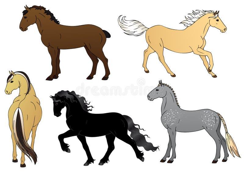 Set of horses - illustration