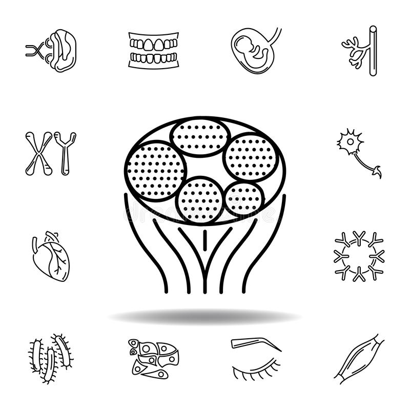 Set of human organs muscle outline icon. Signs and symbols can be used for web, logo, mobile app, UI, UX. On white background royalty free illustration