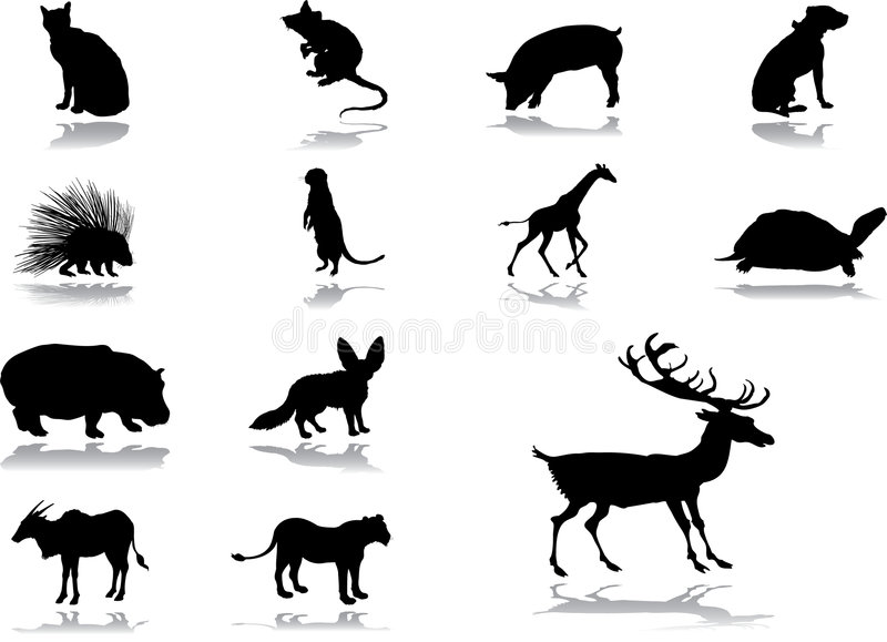 Download Set Icons - 54_. Animals Stock Image - Image: 8669471