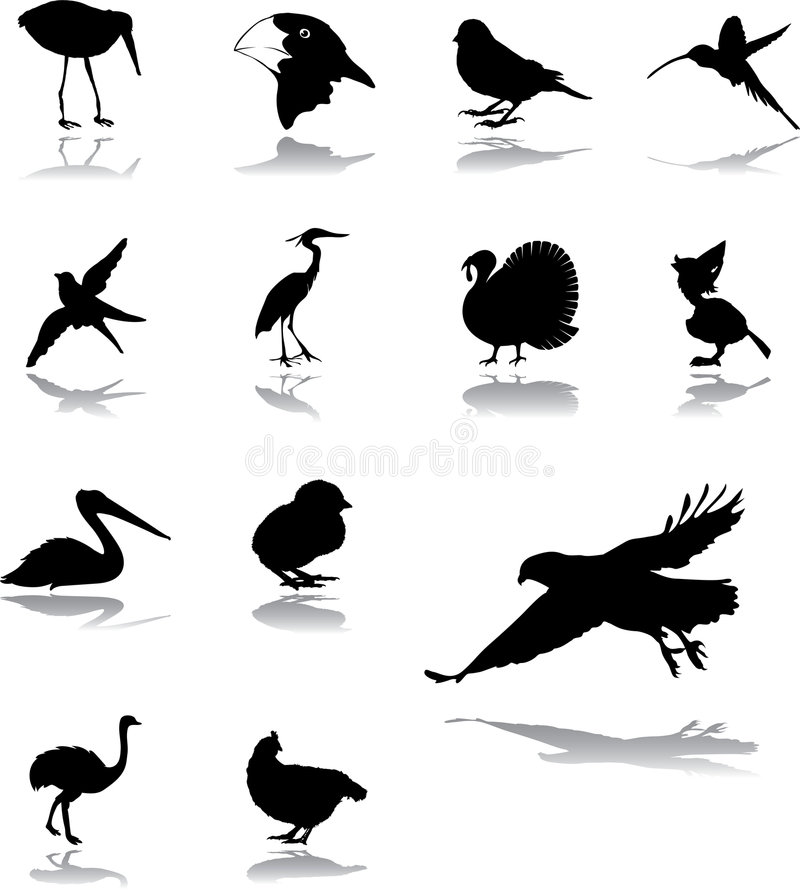 Download Set Icons - 94. Birds Stock Images - Image: 8669884