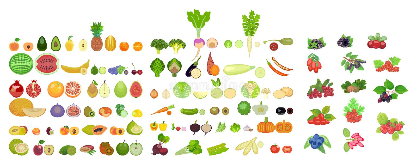 Set of icons of fruits, vegetables and berries of different species are whole and in section vector illustration