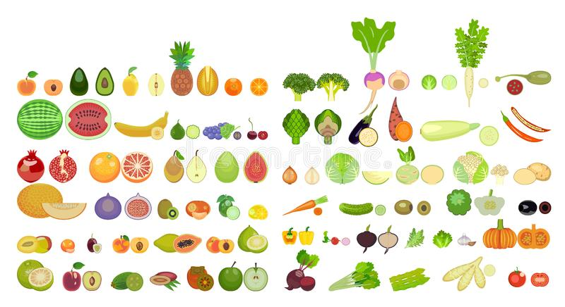 Set of icons of fruits and vegetables of different species are whole and in section. vector illustration