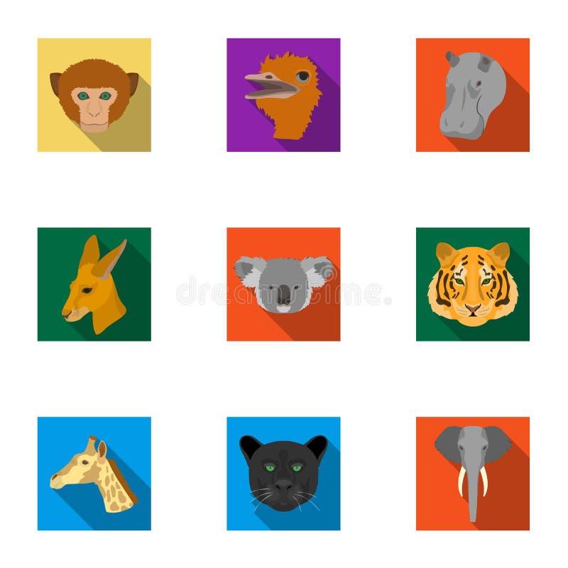 Set ikony dzikie zwierzęta Drapieżczy i pokojowi dzikie zwierzęta Realistyczna zwierzęca ikona w ustalonej kolekci na mieszkaniu ilustracja wektor